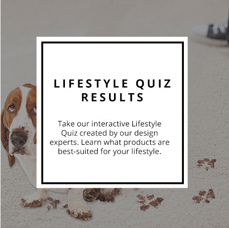 Lifestyle Quiz Results